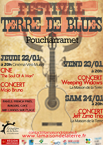 Affiche Terre de Blues 2015