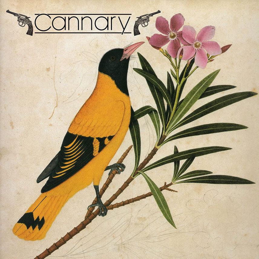 Illustration - Concert, Cannary, samedi 24 novembre 2018